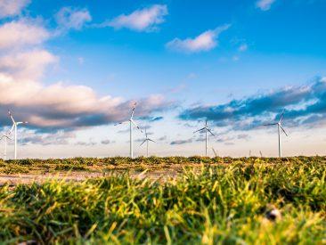 wind-farm-1209335_1920